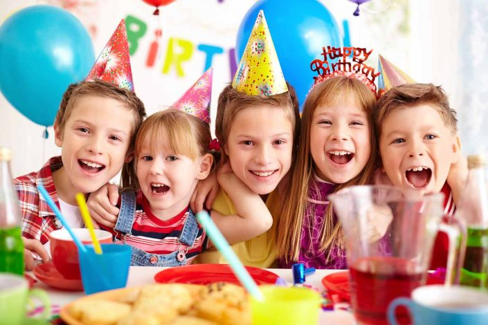 Top Barn Farm Park Birthday Parties