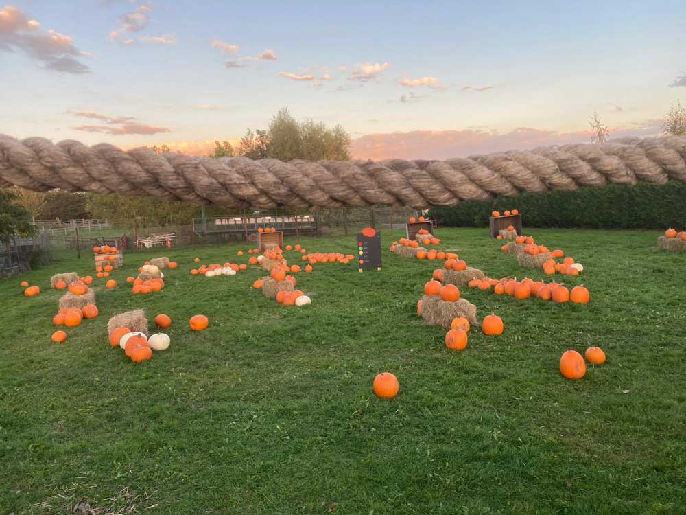 Pick a Pumpkin at Topbarn Farm Shop
